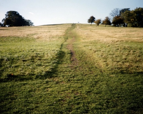 The grassy hill (Primrose Hill)